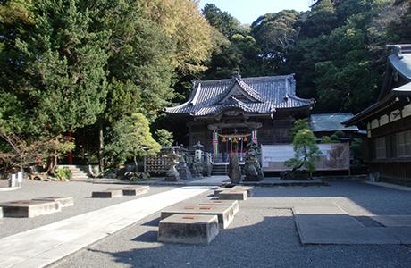 古木に囲まれた伊豆白浜神社